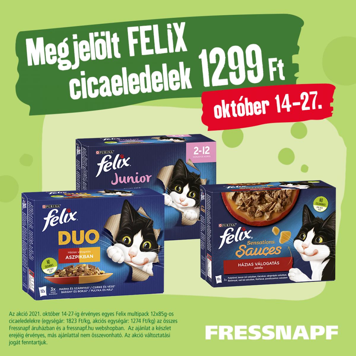 FN_Felix_1080x1080 (1)